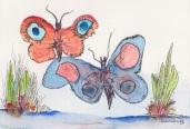 2 Butterflies ©scott morgan